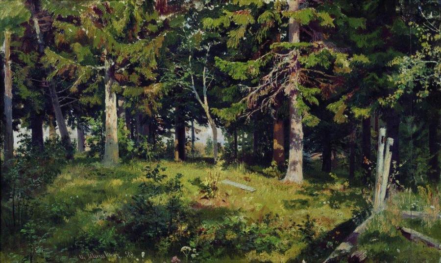 Поляна в лесу. 1889.jpg