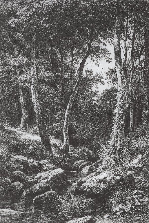 Ручей в лесу. 1870.jpg