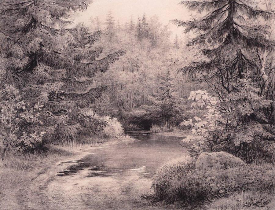 Ручей в лесу.jpg