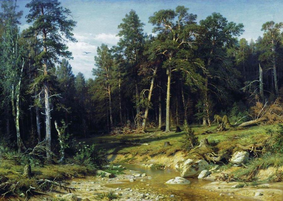 Сосновый бор. Мачтовый лес в Вятской губернии. 1872.jpg