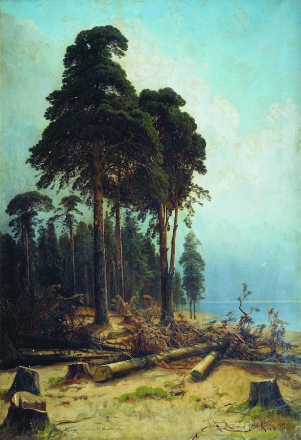 Сосновый лес. 1883-1894.jpg