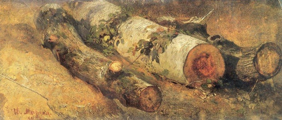 Срубленные березы. 1864.jpg