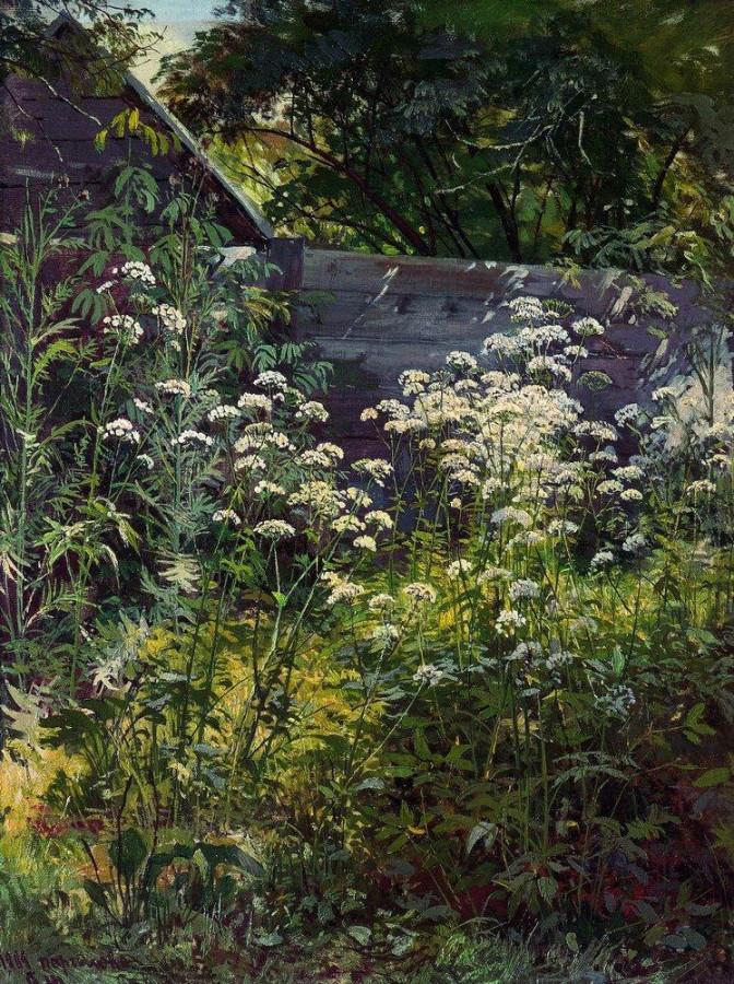 Уголок заросшего сада. Сныть-трава. 1884.jpg