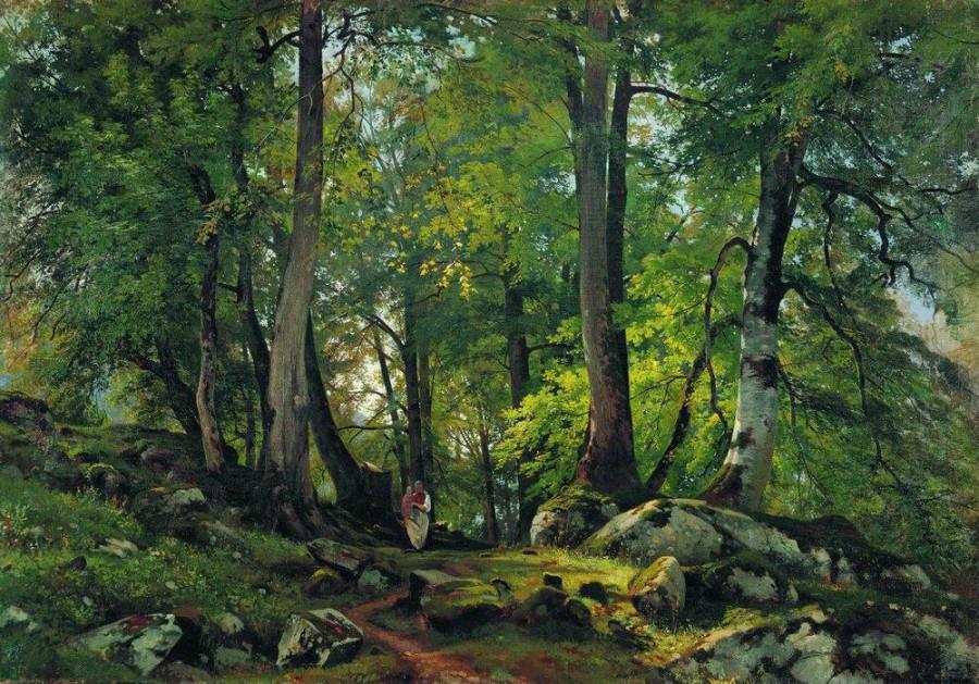 Буковый лес в Швейцарии. 1863-1864