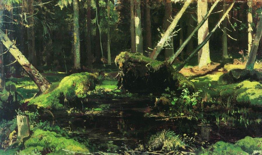 Бурелом. 1886-1887