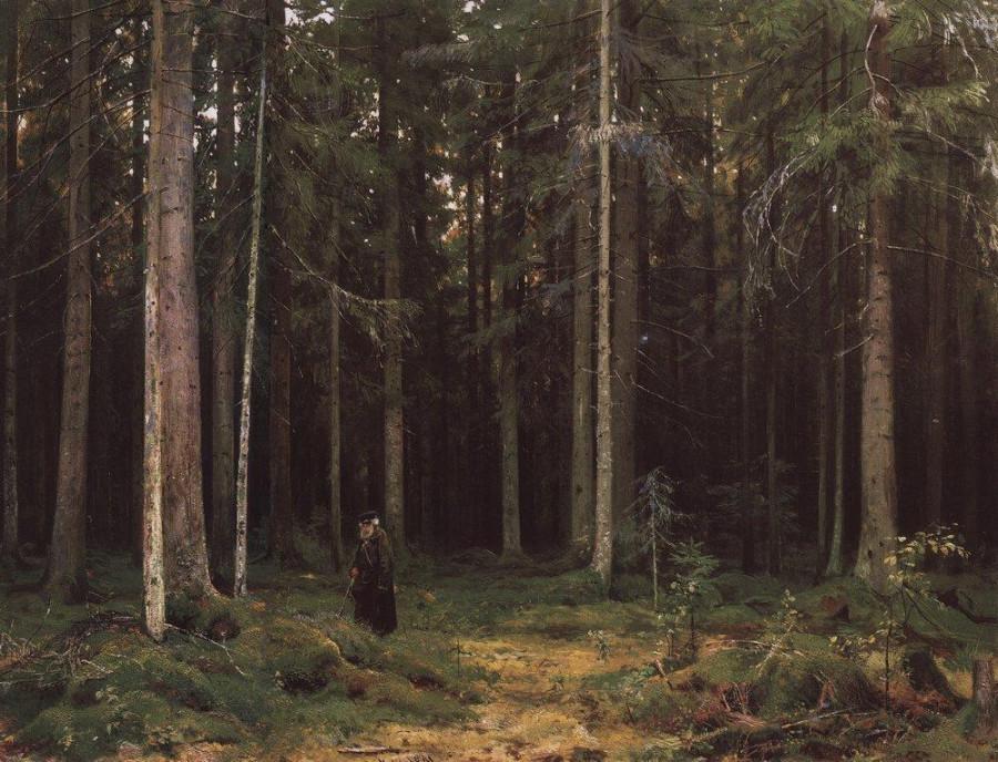 В лесу графини Мордвиновой. Петергоф. 1891