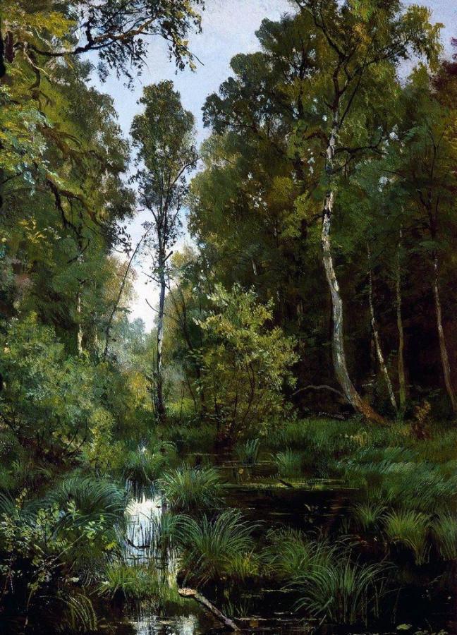 Заросший пруд у опушки леса. Сиверская. 1883
