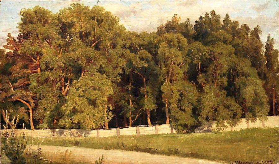 Лес за оградой. 1898