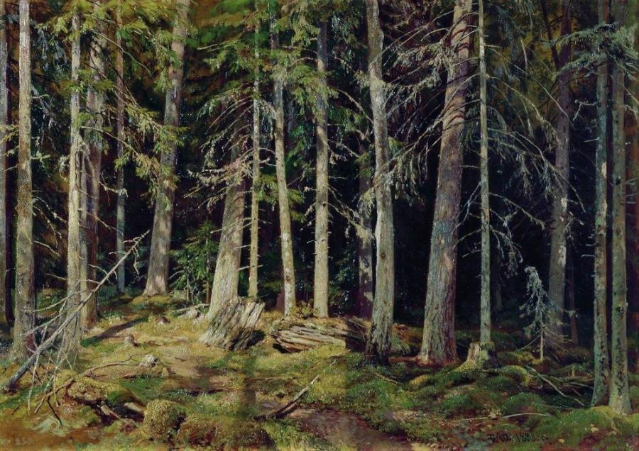 Лес. 1888