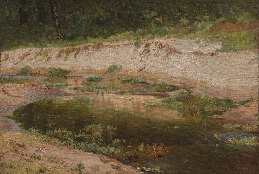 Лесной ручей. 1895