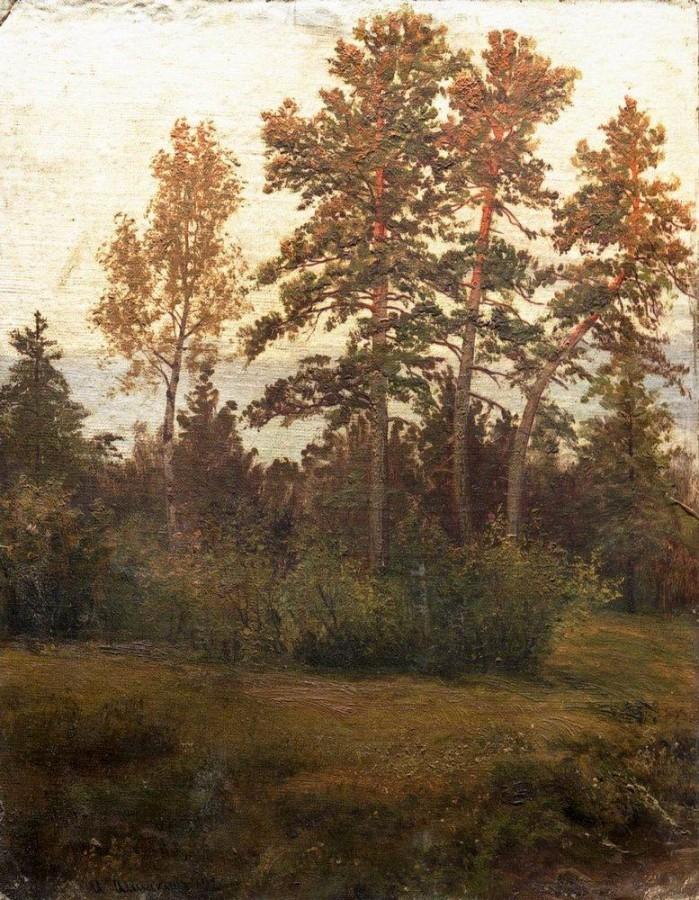 Опушка леса. 1892