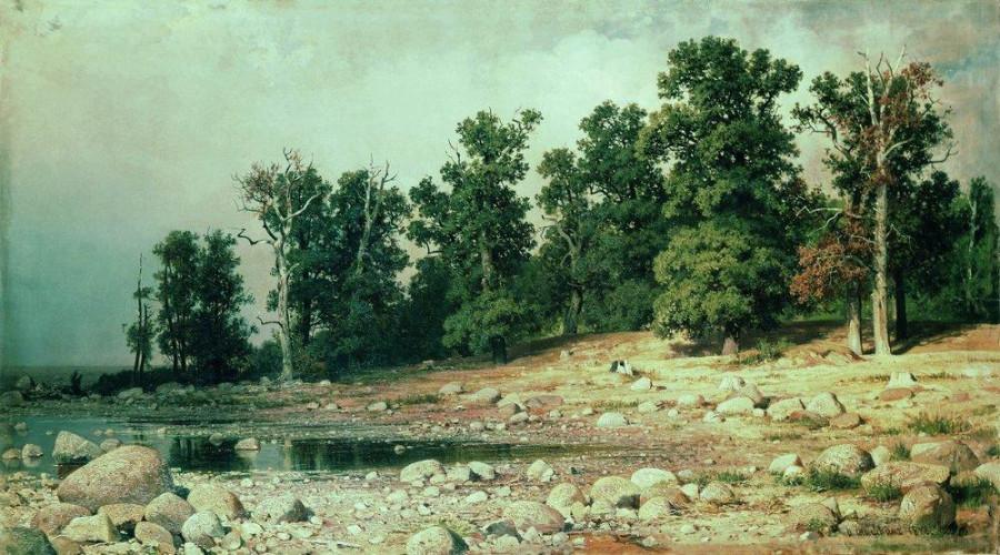 Побережье дубовой рощи Петра Великого в Сестрорецке1. 1885