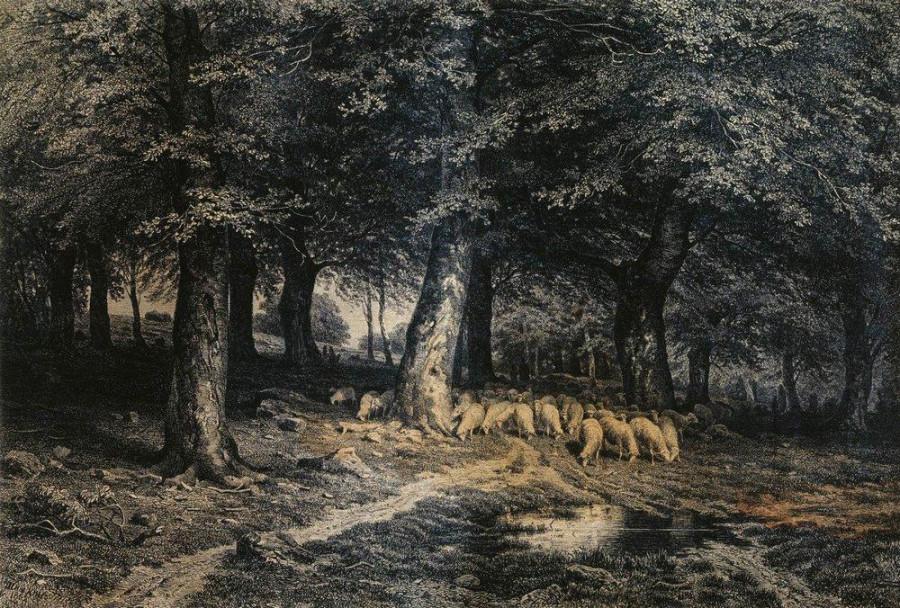 Стадо овец в лесу. 1865