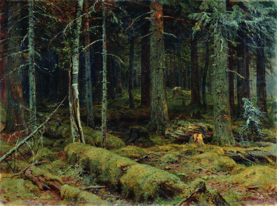 Темный лес. 1890