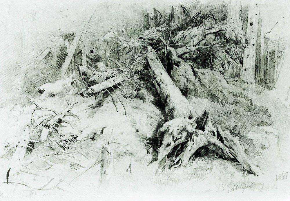 Бурелом. 1867