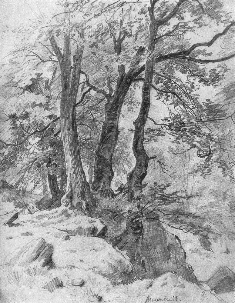 В лесу. 1886