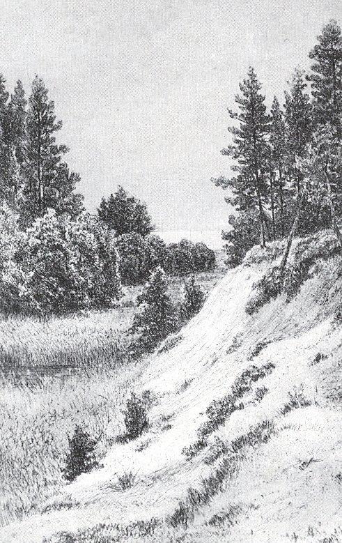 В Сестрорецке. 1886