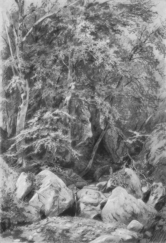 Деревья у ручья на горе Кастель. 1879