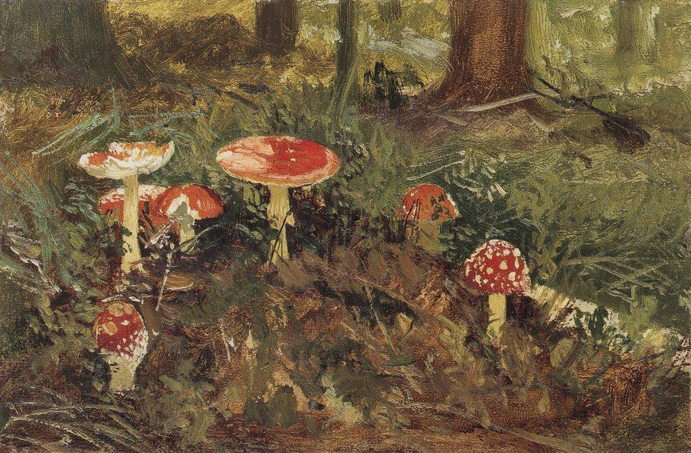 Мухоморы. 1878-1879