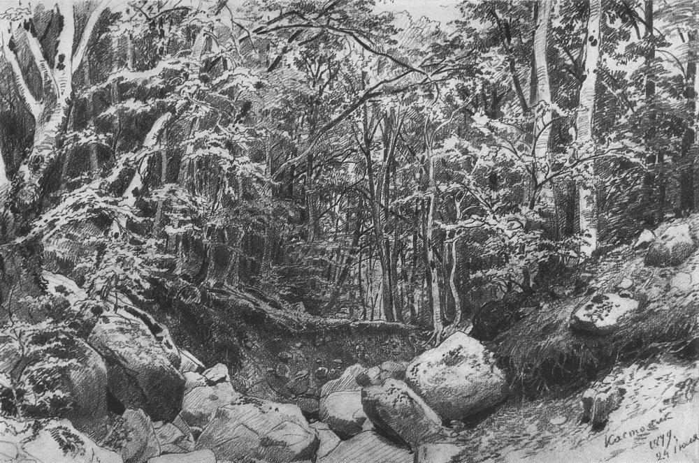 На горе Кастель в окрестностях Алушты. 1879