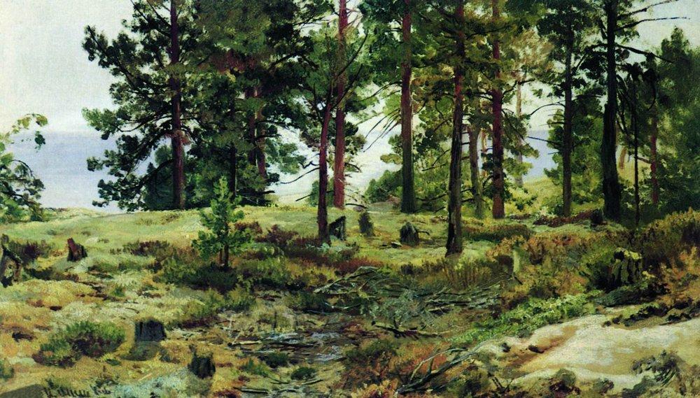 На песчаном грунте. Мери-Хови по Финской железной дороге. 1889-1890