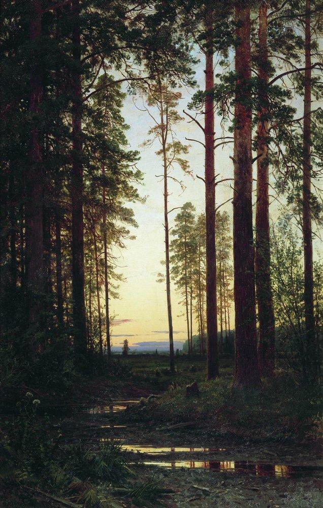 Сумерки. 1883