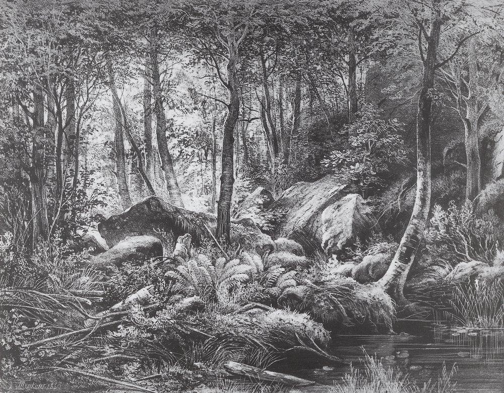Трущоба (Вид на острове Валааме). 1860