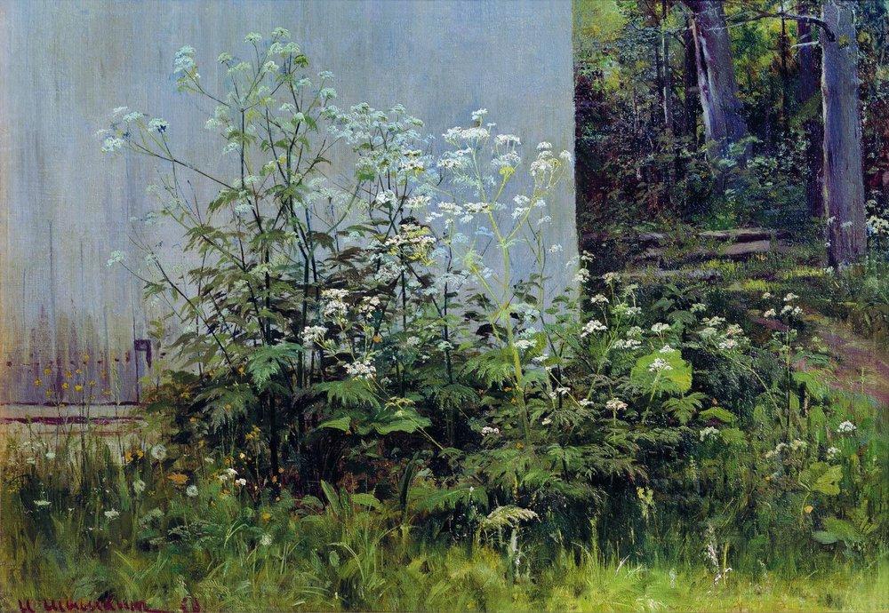 Цветы у забора. 1880-е