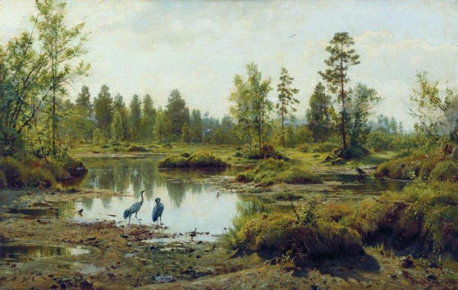 Болото. Полесье. 1890