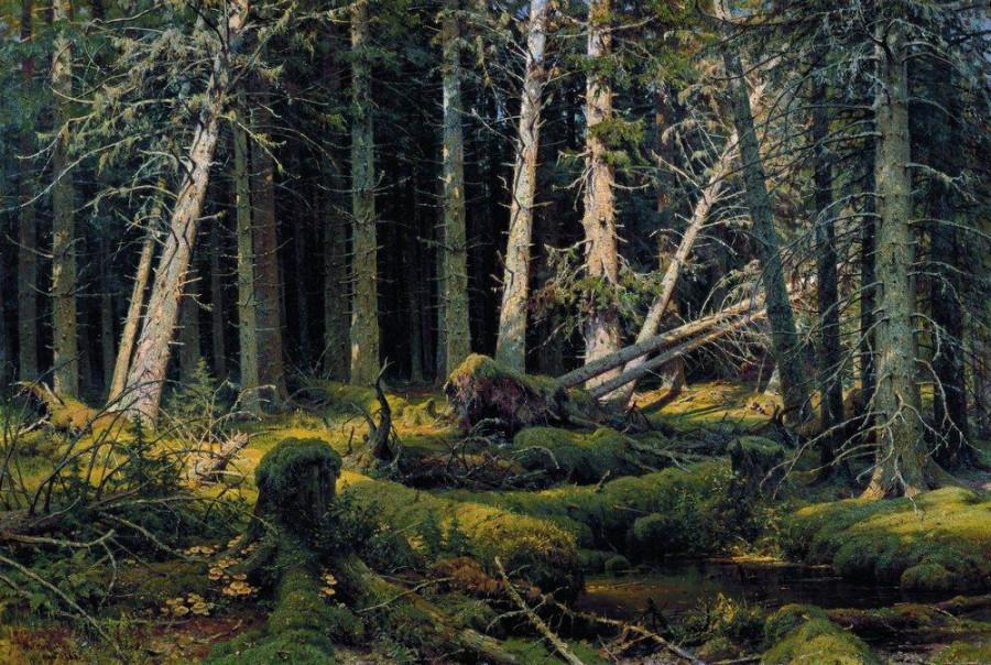 Бурелом. 1888