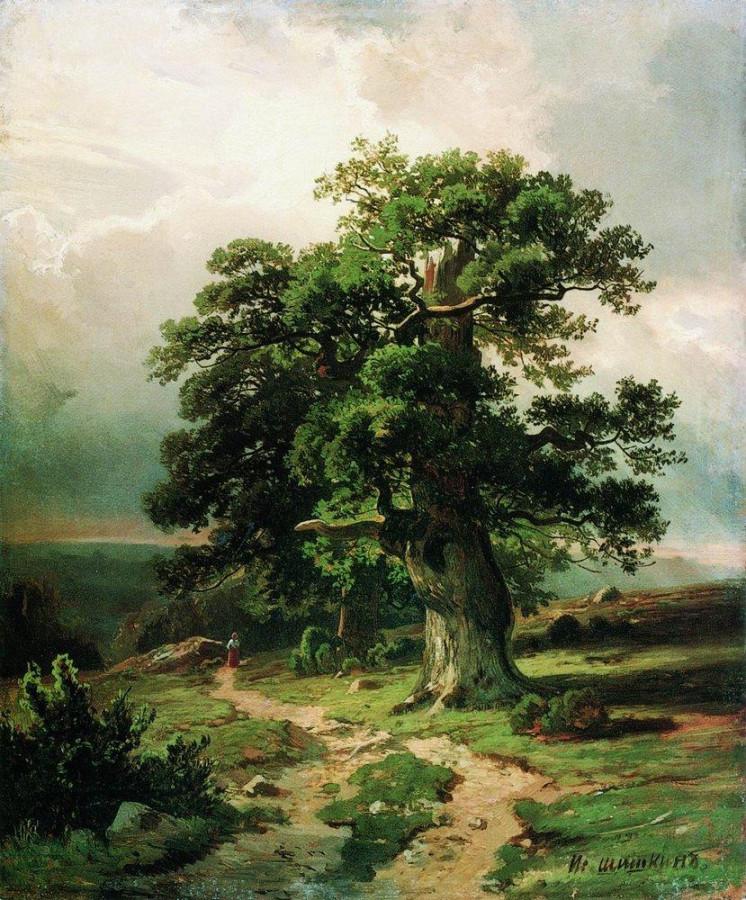 Дуб. 1865