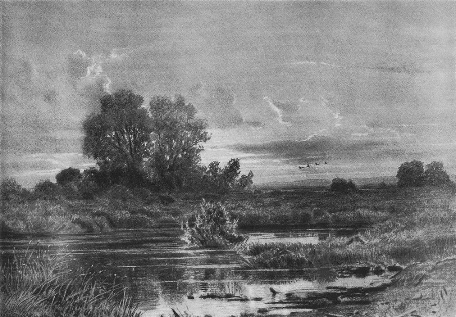 Заросший пруд. 1884