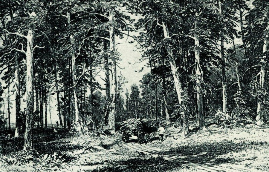 Лес. 1876