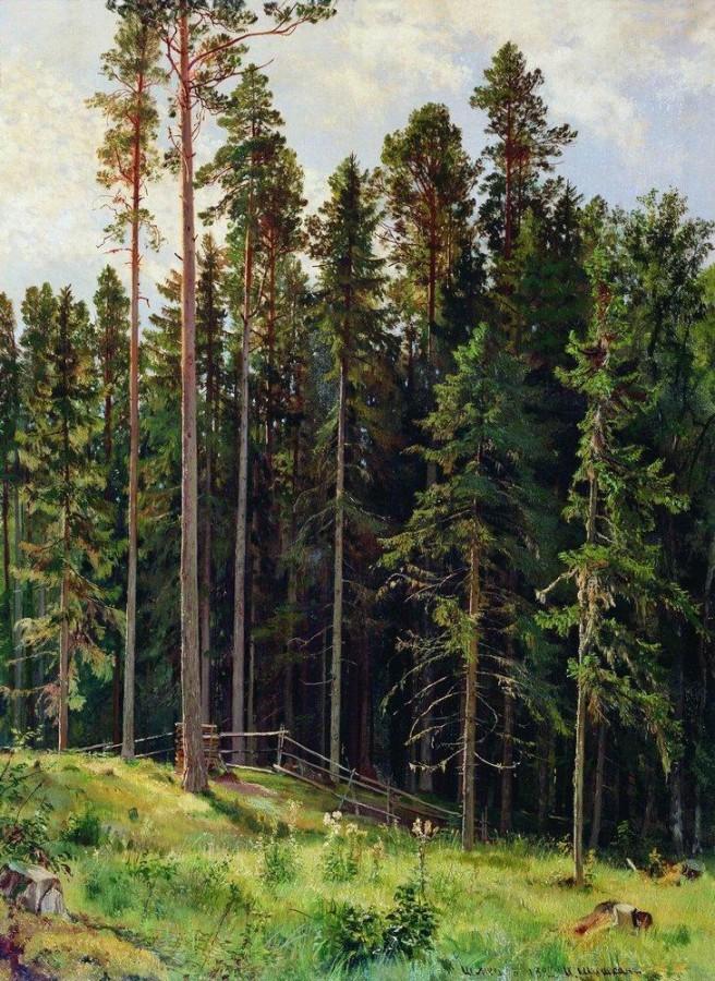 Лес. 1892