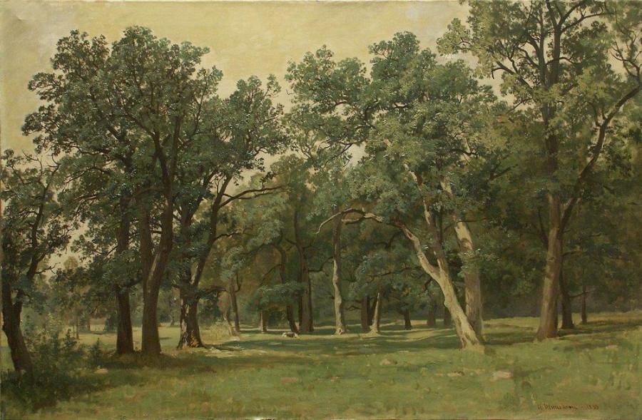 Лесная поляна. 1889