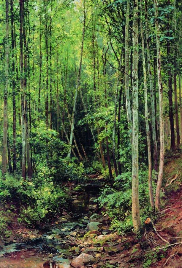Лес-осинник. 1896