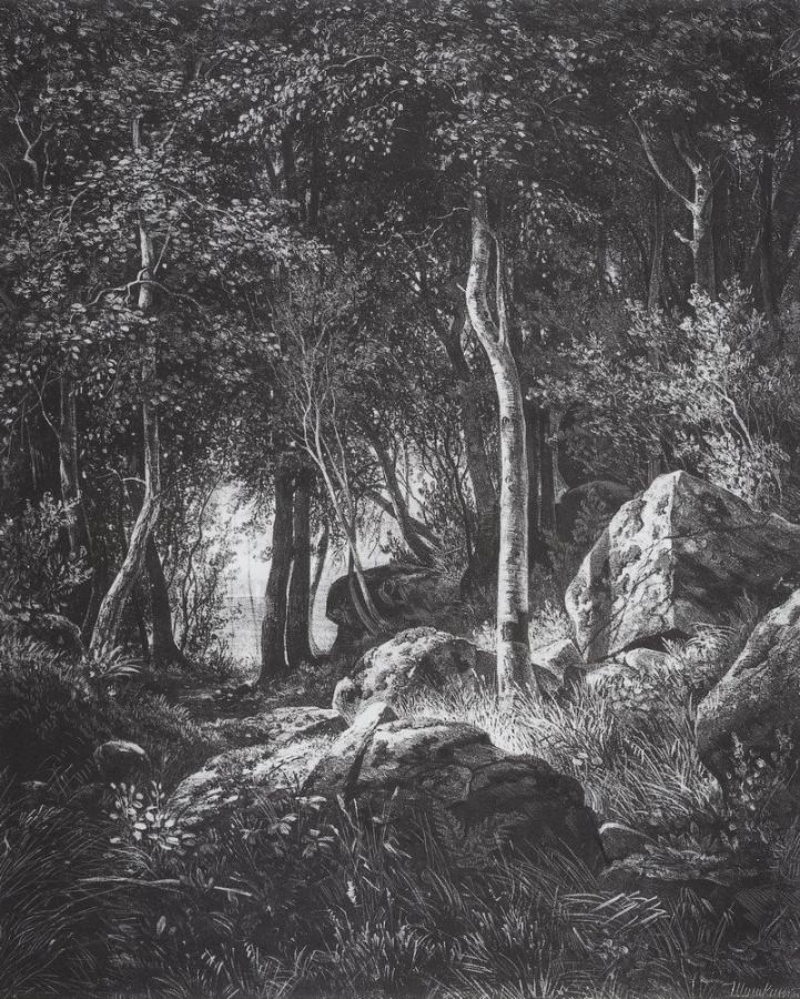 На краю березовой рощи. Остров Валаам. 1859-1860