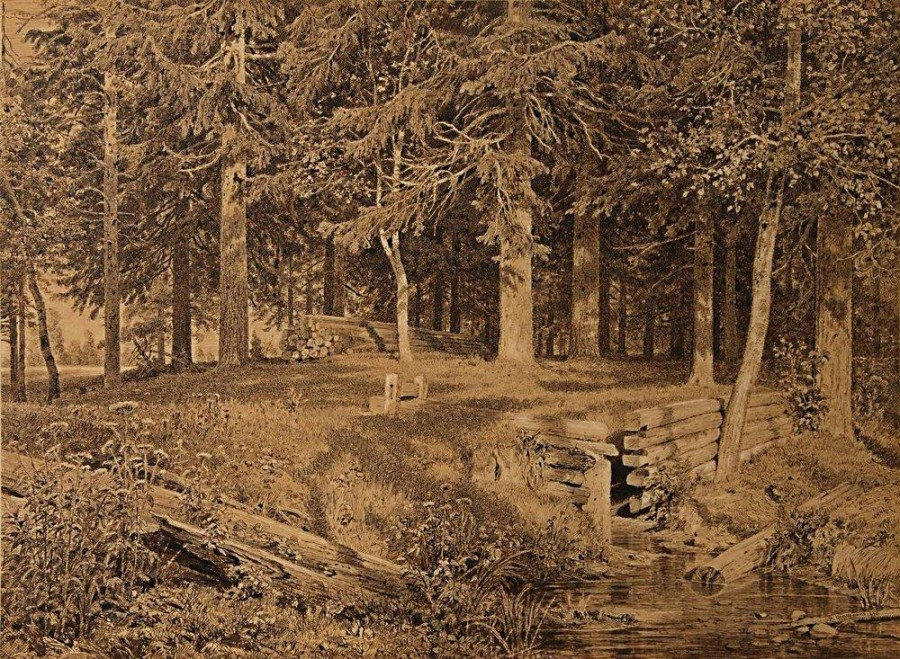 Опушка леса (Еловый лес). 1890