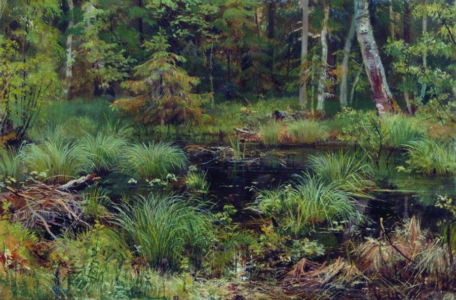 Родник в лесу. 1892