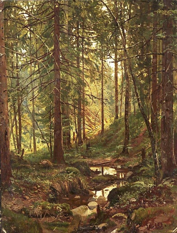 Ручей в лесу. Сиверская