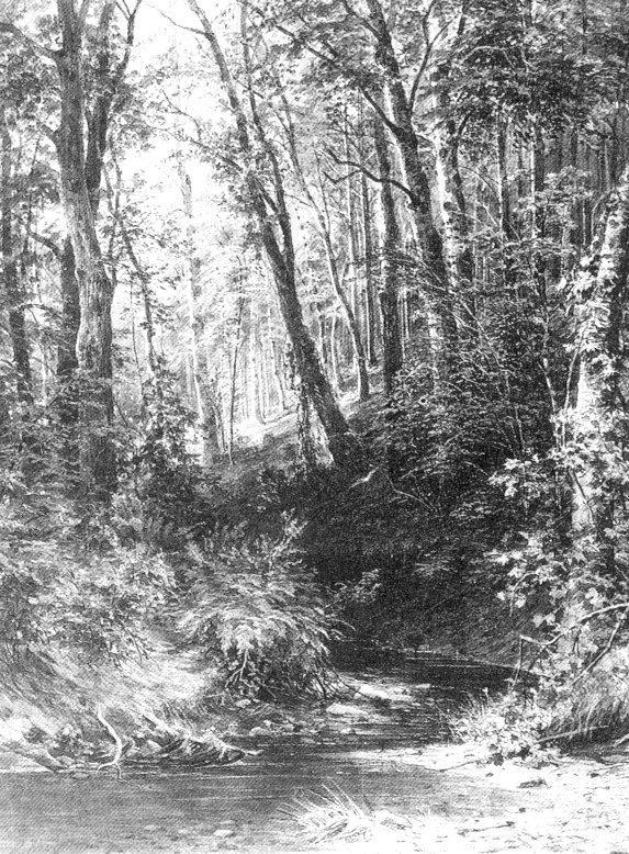 Ручей в лесу2. 1880-е