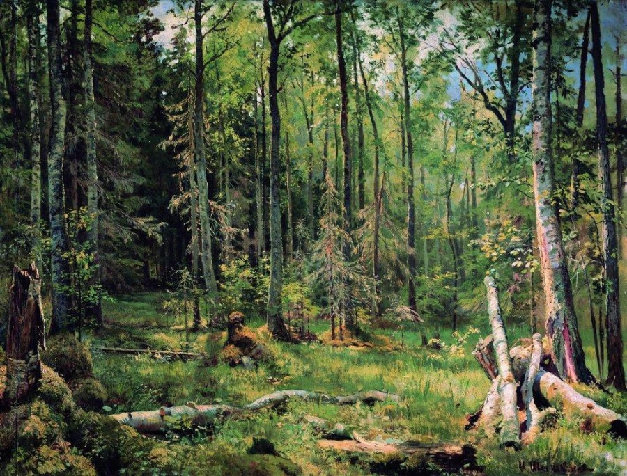 Смешанный лес (Шмецк близ Нарвы). 1888