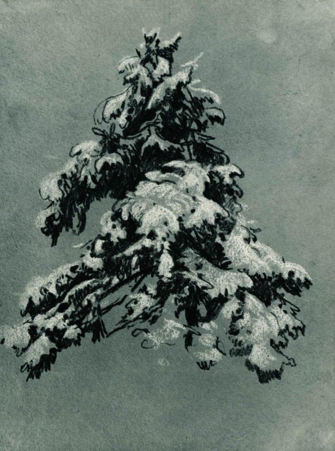 Сосна под снегом. 1890