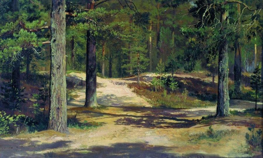 Сосновый лес2. 1889