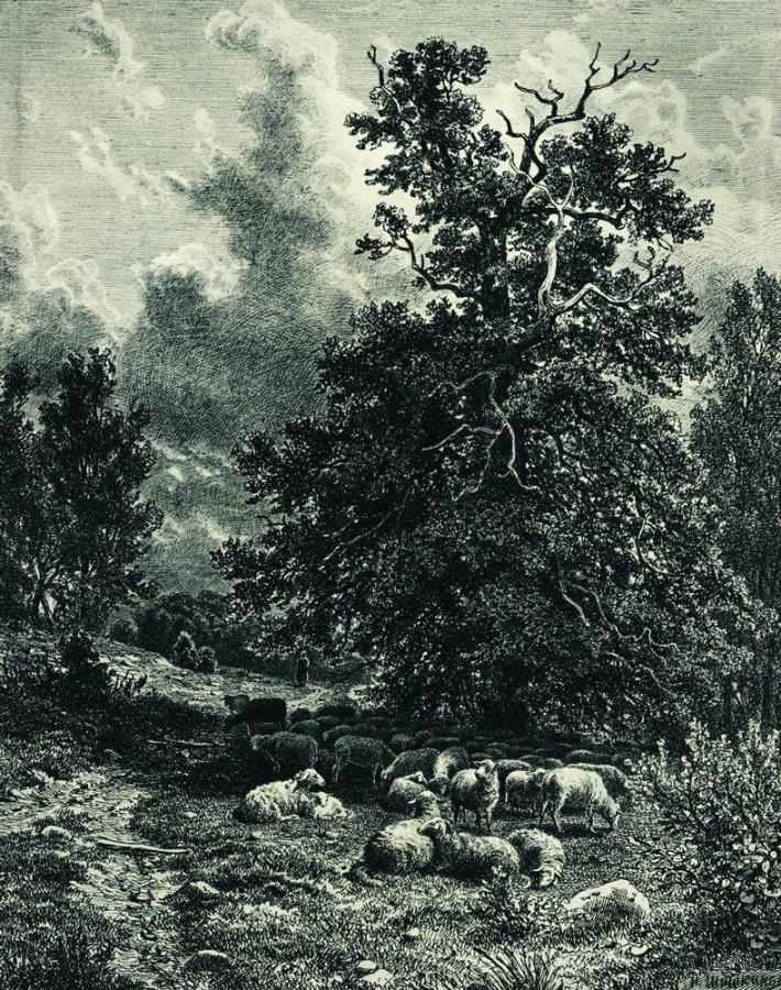 Стадо овец на опушке леса. 1860-е