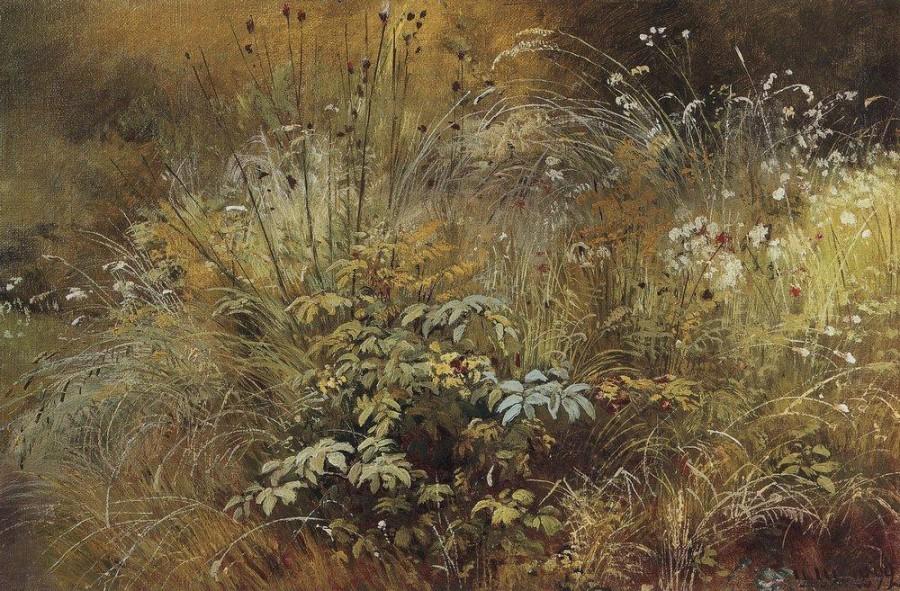 Травки. 1892