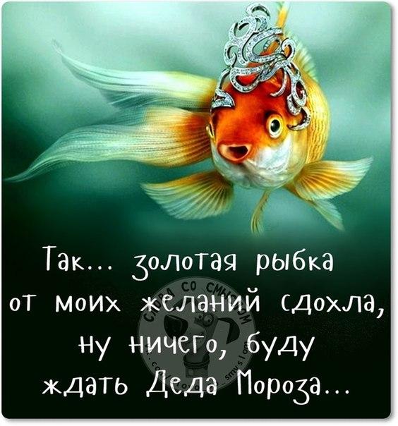 1450897425_ng-14