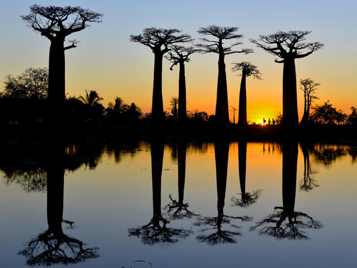 national_geographic_24