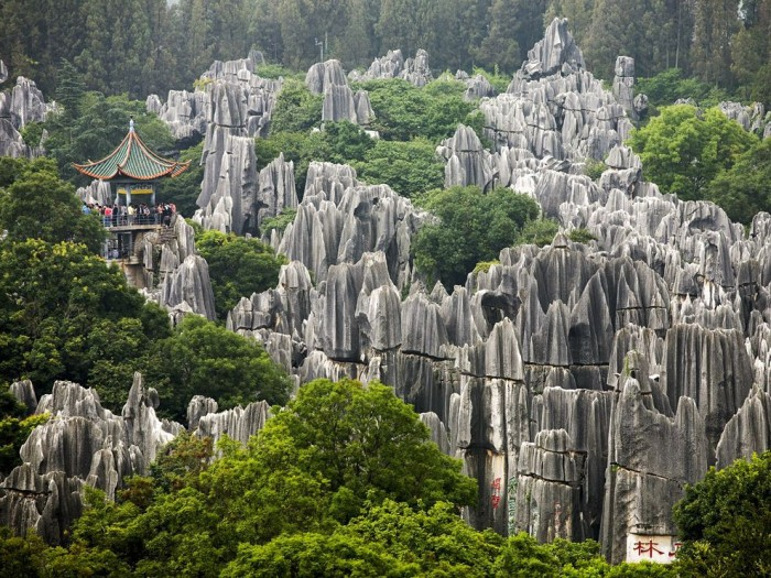 national_geographic_31