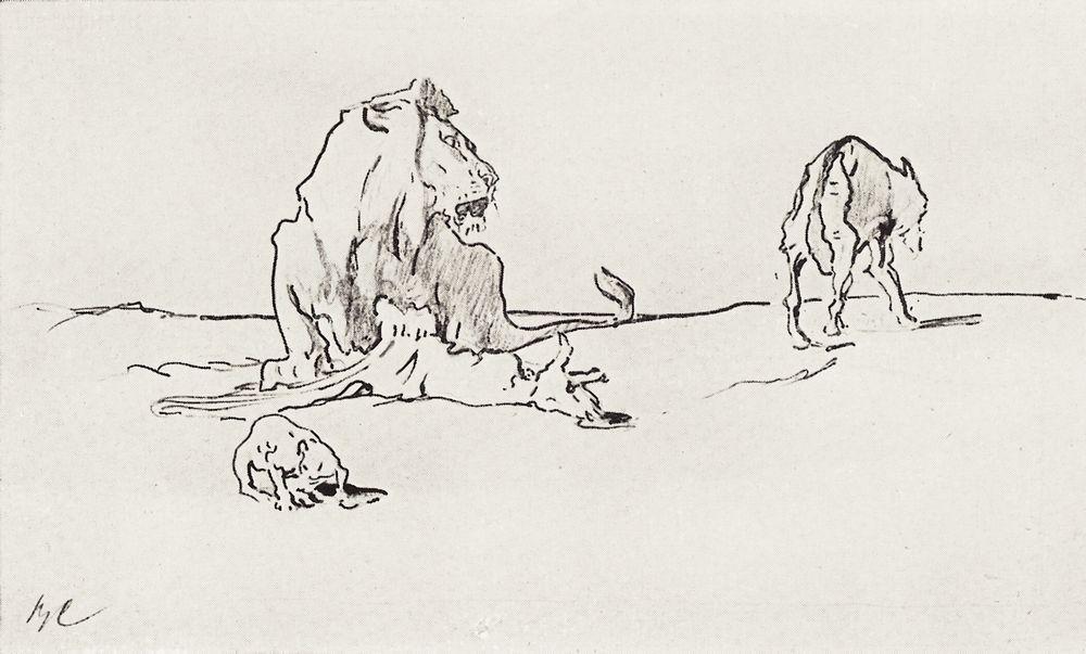 Лев и волк. 1911
